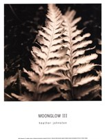 Moonglow III Fine-Art Print