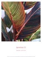 Vermillion III Fine-Art Print