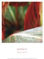 Vermillion IV Fine-Art Print