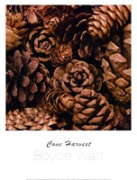 Cone Harvest Fine-Art Print