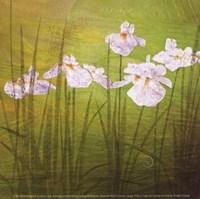 Garden Delights II Fine-Art Print