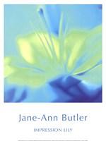 Impression Lily Fine-Art Print