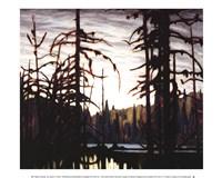 Beaver Swamp Fine-Art Print