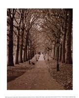Autumn Stroll II Fine-Art Print