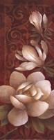 MagnoliaMelodyI Fine-Art Print