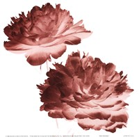 RedPeonies Fine-Art Print