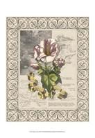 Garden for June III Fine-Art Print