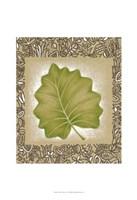 Exotic Palm Leaf I Fine-Art Print