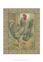 Cassell's Roosters with Border II Fine-Art Print