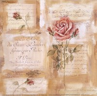 Rose Concerto II Fine-Art Print