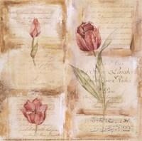 Rose Concerto III Fine-Art Print