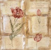 Rose Concerto IV Fine-Art Print