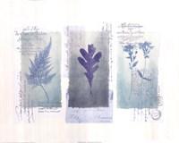 Designer Stamp I Fine-Art Print