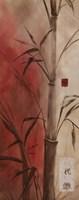 Bamboo Design II Fine-Art Print