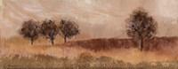 Fields of Gold I Fine-Art Print