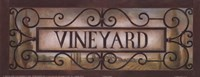 Vineyard Fine-Art Print
