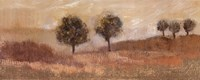Fields of Gold II Fine-Art Print