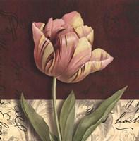 Postcard Tulip Fine-Art Print