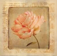 Love Letters IV Fine-Art Print