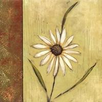 Celadon Beauty I Fine-Art Print