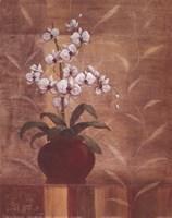 Orchid Obsession I Fine-Art Print