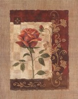 Burlap Tea Rose Fine-Art Print