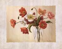 Cynde's Poppies Fine-Art Print