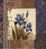 Blue Iris Scroll Fine-Art Print