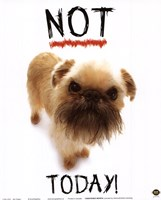 Not Today! Fine-Art Print
