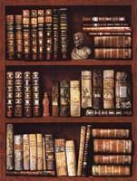Library Fine-Art Print