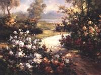 Pathway of Flowers Fine-Art Print