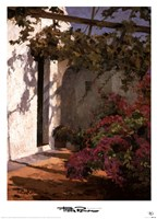Bougainvillea and Vine Fine-Art Print