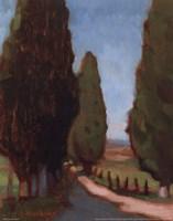 Cypress Trees I Fine-Art Print