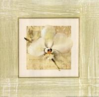 Exotic Floral III Fine-Art Print