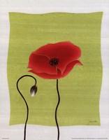 Pretty Poppy Fine-Art Print