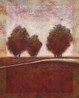 Morning Mist Rising I Fine-Art Print