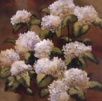 Spring Sonnet Fine-Art Print