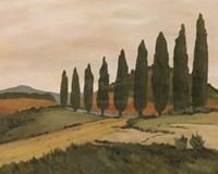 Shady Tuscan Road Fine-Art Print