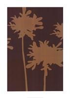 Pompom Cinnamon (reverse) Fine-Art Print