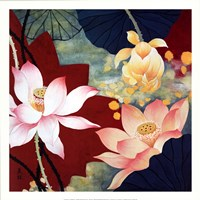 Lotus Dream II Fine-Art Print