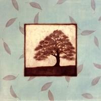 Oak Fine-Art Print