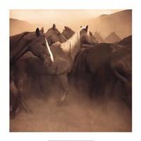 Remuda, Spanish Ranch Fine-Art Print