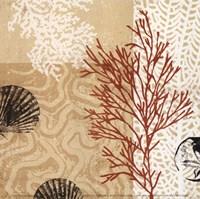 Coral Impressions II Fine-Art Print