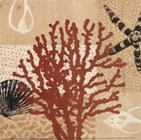 Coral Impressions III Fine-Art Print