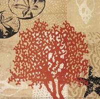Coral Impressions IV Fine-Art Print