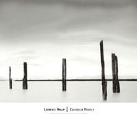 Cluster of Posts I Fine-Art Print