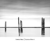 Cluster of Posts II Fine-Art Print