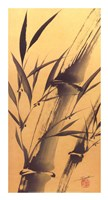 Bamboo's Strength Fine-Art Print