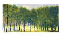 Soft Green Grove Fine-Art Print