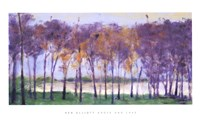 Grove and Lake Fine-Art Print